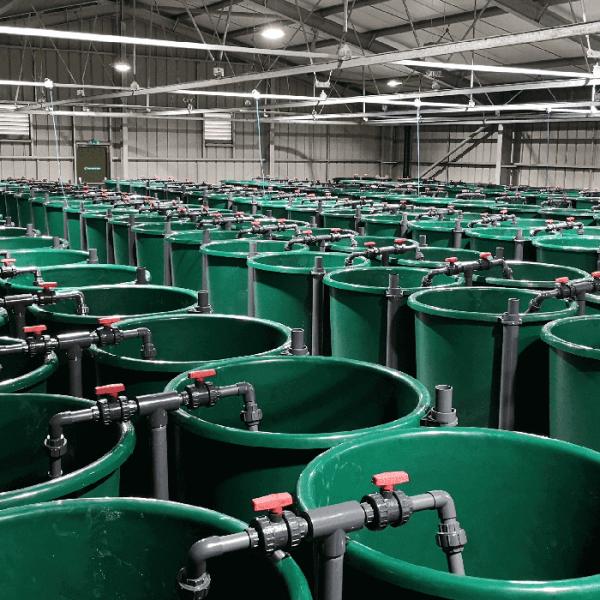 large green plastic equipment
