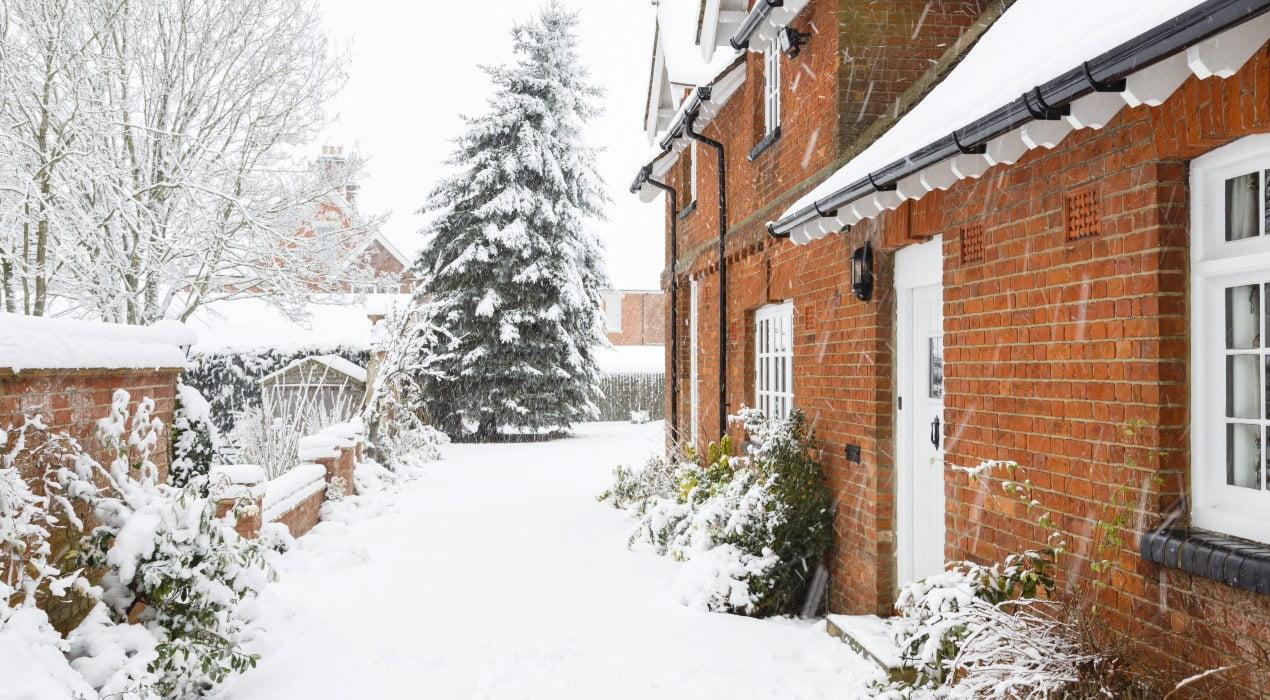 Snow-in-garden (1)